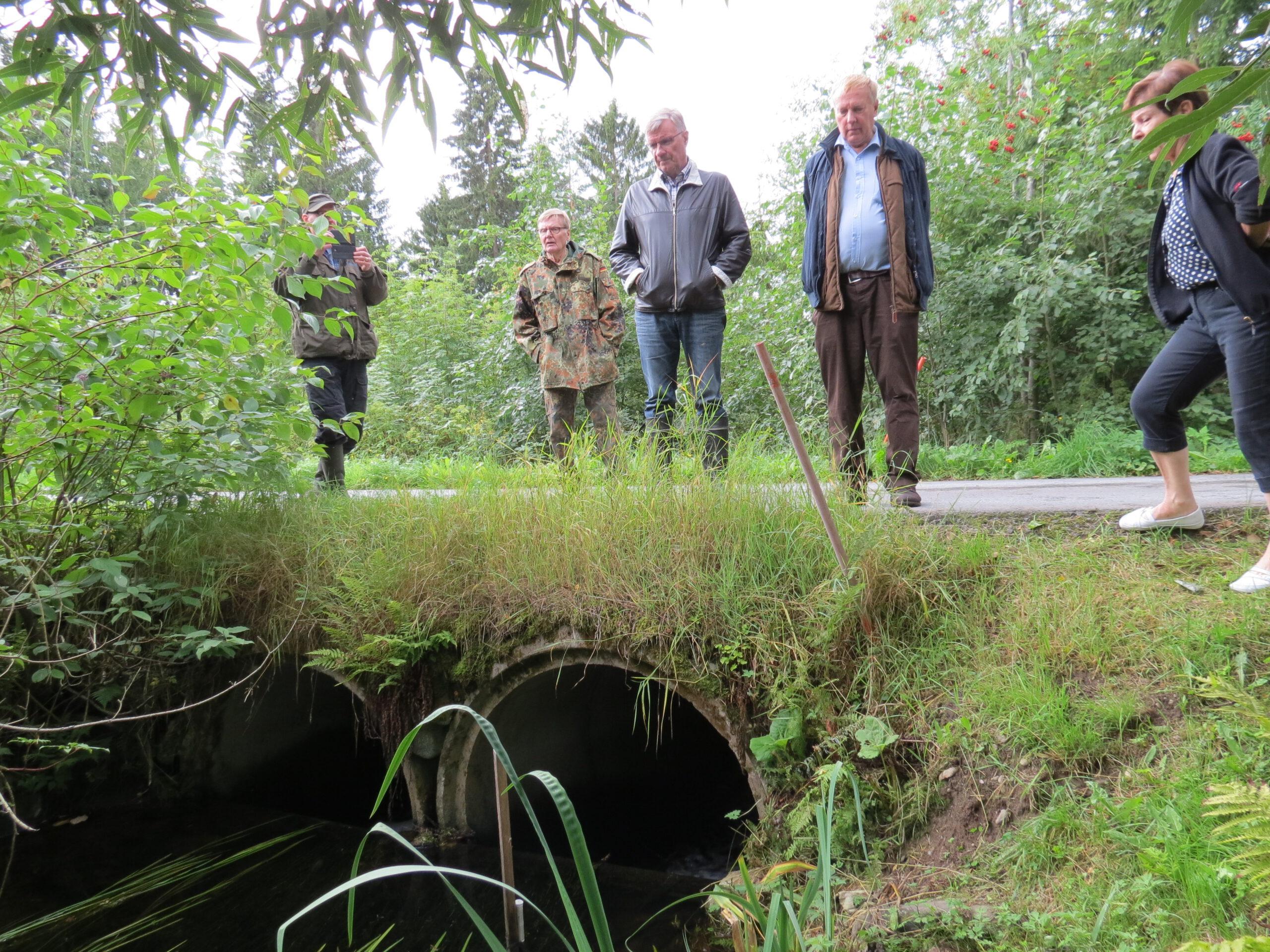 Projektiryhmä maastokatselmuksella tutkailemassa Kankaisten kylällä Myllyojan ylittävän tien tierumpuja, joiden vesivaneripato esti kalan pääsyn ylävirtaan rumpujen ohi.