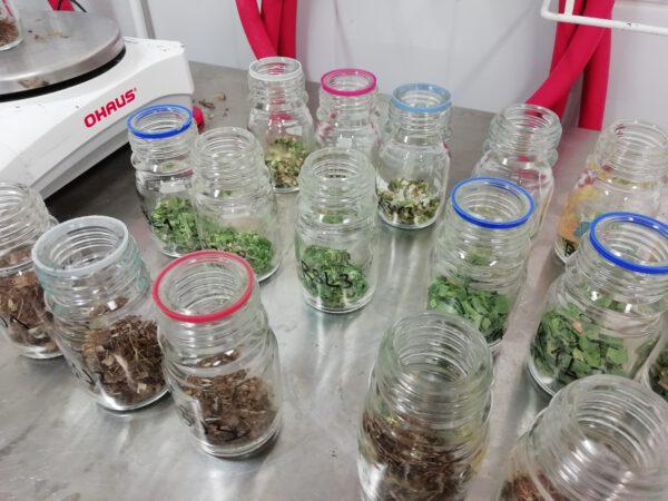 Isosorsimon ominaisuuksia tutkitaan mm. erilaisin laboratoriokokein.